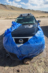 Marmot Wrap (Jeffrey Sullivan) Tags: california copyright usa car canon photo august whitemountains pines allrightsreserved 2012 bristlecone easternsierra inyonationalforest inyocounty ancientbristleconepineforest biishop jeffsullivan