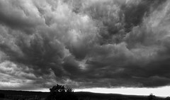 Thunderstorm clouds over Zabergäu (G. Lang) Tags: explored wolken clouds deutschland germany zabergäu dunklewolken badenwürttemberg frauenzimmern sonyrx100iii allemagne nuages gewitter thunderstorm orage schwarzweis bw monochrome blackwhite