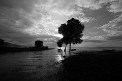 Sunset And Trees (marco soraperra) Tags: light sunset sea sky blackandwhite lake tree nature water nikon noir noiretblanc d himmel wolke nikkor blanc baum 750