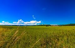 The Fields of Love (yarin.asanth) Tags: blue summer sun green landscape drive spring corn farm sting cruising fields mazda daydream smalltown atb mx5 fieldsofgold fieldsoflove yarinasanth gerdkozik