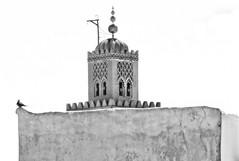 MOR_0458 -1p (Snappr007 (Winston Tinubu)) Tags: photography berber winston jamaaelfna islamicdesign moroccanarchitecture arabicart tinubu moroccandesign moroccanart arabdesign flickr007 berberart