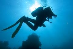 Towards (fxdx) Tags: diver towards blue scuba diving el quseir water sun sunlight backlight