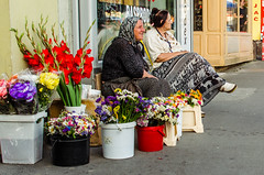 179/365 (goran1101) Tags: street city people 35mm nikon candid nikkor d5100