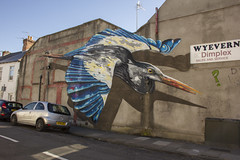 Street art: Plasnewydd Road, Roath, Cardiff (Dai Lygad) Tags: streetart mural art wall roath cardiff caerdydd wales yrhath plasnewyddroad cyfarthfastreet urban city terrace building bird striking beautiful photo picture image photograph photography july summer outside outdoors outdoor canon 550d eos weekend flickr dailygad jeremysegrott flaneur psychogeography street geotagged visual space public emptywalls car suburb thediff artderue beak artecallejero arturbain questionmark publicspace flying pavement camera 2016 nice arteurbano artonthestreets wonderful amazing westernmail postcardfromwales postcardsfromwales paysdegalles