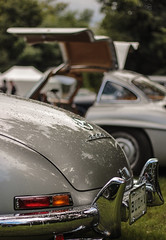 Gullwing (NaPCo74) Tags: 1955 de mercedes switzerland suisse geneva geneve swiss sl papillon 300 chateau concours genve elegance gullwing coppet lgance worldcars