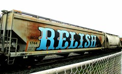relish (timetomakethepasta) Tags: relish freight train graffiti art hopper rusty albany new york wholecar ncix taboo