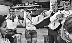 Liquid Courage and the Mariachis (Rob Sneed) Tags: party music bar mexico singing guitar band tequila celebration violin mariachi cozumel vocals musicalinstruments clebration guitarron sanmigueldecozumel vihuela elcoctelito