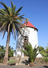 Museo Agrcola El Patio (Graham`s pics) Tags: trip travel vacation holiday tree tourism windmill village lanzarote palmtree canaryislands tiagua agriculturalmuseum museoagrcolaelpatio