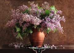 The Lilacs Are In Bloom (panga_ua) Tags: light stilllife color green art floral composition canon spectacular lights spring artwork ceramics acrylic shadows perfume artistic miracle embroidery availablelight rich blossoms may ukraine poetic explore creation lilac harmony bloom strong imagination natalie bouquet delicate floralarrangement arrangement tabletop lilacs springtime bodegon naturemorte panga artisticphotography rivne naturamorta artphotography sharpfocus heartshapedleaves explored paintedbackground floralstilllife woodentabletop paintedjug  nataliepanga thelilacsareinbloom