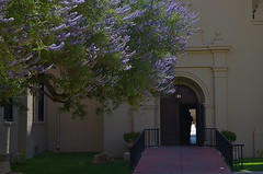 Bower (MPnormaleye) Tags: flowers trees urban beautiful architecture 35mm campus pretty quiet arch purple blossom landscaping entrance foliage step utata bloom portal stoop