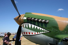 "P-40 Warhawk (4) • <a style=""font-size:0.8em;"" href=""http://www.flickr.com/photos/81723459@N04/9279493392/"" target=""_blank"">View on Flickr</a>"