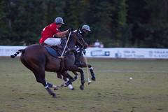 Julian Joailliers vs. Hotel de Paris (Claude Schildknecht) Tags: horse cheval finale pferde polo pferd chevaux gassin