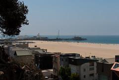 SANTA MONICA BEACH (skech82) Tags: california sea house tree beach pier casa mare santamonica jetty quay lunapark rollercoaster root albero spiaggia molo radici radice montagnerusse d3000 skech82