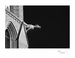 Gargoyle (heritagefutures) Tags: english heritage early site university catholic heart cathedral roman gothic australia charles william victoria historic gargoyle management sacred preservation bendigo sturt tappin pkm397