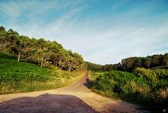 Backyard. (ekaintc) Tags: road trees sunset summer mountain nature spain nikon europe roadtrip galicia galiza finisterre fisterra
