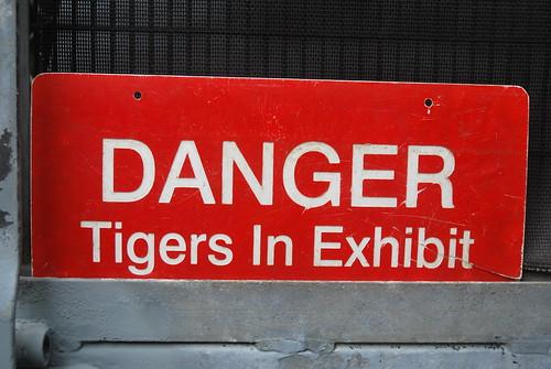 Tiger Exhibit San Diego Zoo