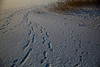 Trail (maaniemi) Tags: winter 3 snow ice canon suomi finland vinter mark iii 5d lumi talvi mk tammikuu 2014 tero jää mkiii mark3 markiii maaniemi muuratsalo