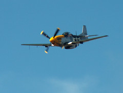 Mustang (johndrake5) Tags: plane fighter aircraft wwii airshow ww2 mustang southport prop warbird propellor p51