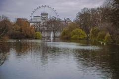 DSCF1955 (andrey.salikov) Tags: england london march spring unitedkingdom buckinghampalace 2014 лондон жж xf1855mmf284rlmois fujifilmxt1 букинге́мскийдворец