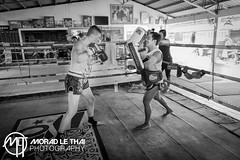 DSC_4010 (MORAD LE THAI Photography) Tags: pattaya thailande sityodtong muaytha