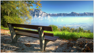Bench with a View / Bank mit Ausblick
