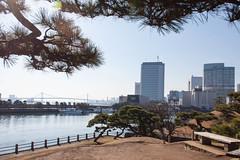 IMG_1956.jpg (vzaliva) Tags: japan saitamaken saitamashi