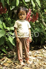 Young indigenuous girl explaining  about insects life in amazonian jungle (kalypsoworldphotography) Tags: poverty travel wild brazil portrait people plant tree tourism peru southamerica nature girl beautiful childhood forest person ecuador amazon colorful colombia village natural outdoor venezuela traditional poor bolivia tribal clothes human jungle local tradition tribe ethnic origin americanindian reservation indigenous cuyabeno peruvian savage amazonia bolivian quechua amerindian mestizo quichua yasuni