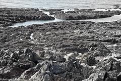 Wembury Rocks 2 (POLEA2012) Tags: bw seascape monochrome rockpools
