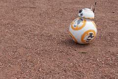 My New BB8FF (annelaurem) Tags: robot starwars droid bb8