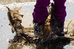 Playing in a Puddle (Vegan Butterfly) Tags: playing cute wet water girl puddle outside person kid vegan child play mud boots adorable splash homeschool muddy homeschooling splashing