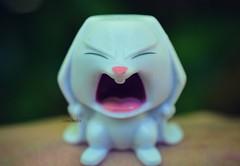 Waaaaaaaaaaaaa (Lawdeda ) Tags: pets cute bunny outside hilarious you expression secret hate stupid snowball lives monday the i so picmonkey
