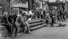 Street entertainment, Rock in York (steve.gombocz) Tags: street york bw music rock blackwhite noiretblanc zwartwit olympus streetmusic blacknwhite greyscale noirblanc streetentertainment negroyblanco bwphotos svarthvitt mustavalkoinen negroblanco neroebianco blackwhitephotos schwartzweiss olympuscamera nerobianco sortoghvid olympususer olympusdigitalcamerausers svartochvitt schwartzundweiss svartoghvitt flickrbw micro43rds olympusblackandwhite olympusbw olympusm25mmf18 olympusmzuiko25mmf18lens olympusem5mark2 czarnyibiaty micro43rdsuk flickrblackwhitephotos
