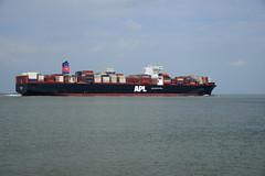 APL Sentosa (DST_0616) (larry_antwerp) Tags: 9632040 aplsentosa container terneuzen netherlands schip ship vessel        schelde