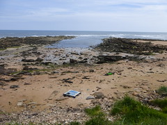 Cambo Harbour (Brian Cairns) Tags: saintandrews cambo fifecoastalpath kingsbarns brianbcairns therockandspindle buddoroack