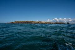 Skomer Island (Dafydd Penguin) Tags: west wales island coast nikon sailing tide cruising coastal 20mm af nikkor rips d600 skomer f28d overfalls