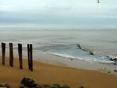 Saint-Denis d'Olron (Mystycat =^..^=) Tags: france sable ciel pierres vague plage bois le piquets iledolron charentemaritime poitoucharentes ocanatlantique saintdenisdolron pertuisdantioche balisedantioche