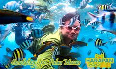 Snorkeling Pulau Macan (tourdejava) Tags: pulauseribu kepulauanseribu jakarta indonesia snorkeling islandhopping wisatapulau underwater diving scuba