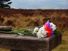 In memoriam... (llocin) Tags: flowers tribute landscape sorrowful melancholy mournful wistful