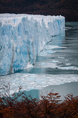 Fall in Los Glacieres National Park (ckocur) Tags: patagonia ice southamerica argentina nationalpark glacier peritomoreno elcalafate icefield southernpatagonia
