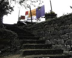 1510 India-1070200 (esther.park) Tags: india kerala meesapulimalatrek munnar westernghats laundry steps villagekids