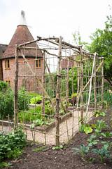 Vegetable garden, Tidebrook Manor (Alan Buckingham) Tags: garden sussex support pole kitchengarden oasthouse vegetableplot tidebrookmanor