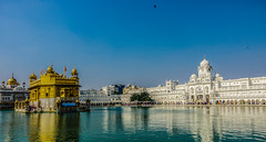 Reflections in The Pool Of Nectar (Dovid100) Tags: india water architecture reflections gold shrine sikh punjab amritsar goldentemple sacredsite southasia subcontinent