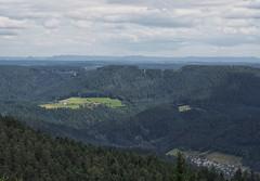 On the top (Paramedix) Tags: mountains germany landscape deutschland olympus berge landschaft schwarzwald blackforest badenwrttemberg schwbischealb mft schiltach kinzigtal em5 swabianmountains teisenkopf