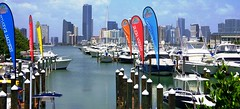 A taste of Miami (Ocean Gypsy 69) Tags: art arty creative concept photoshop ocean water deep miami skyline florida fish feeding oceangypsy69 gypsy 69 blue waves deerfield ft lauderdale pompano summer sea sun keybiscayne boats flags