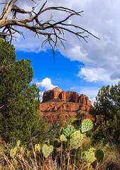 Cathedral Rock, Sedona Arizona (Buck--Fever) Tags: cathedralrock sedona sedonaarizona arizona arizonaskies arizonadesert lake cactus canon60d centralarizona