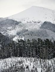 Monte Oiz (mmontesfotografo) Tags: euskadi euskadipaisvasco landscapephotography landscape blackandwhite blancoynegro monochrome monocromo monte nieve white snow ngc