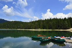 (_) Tags: lake summer forest mountain herzegovina montenegro withoutfilter