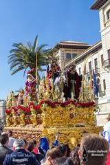 Borriquita 2015 (28) (Guion Cofrade) Tags: santa religion iglesia gloria andalucia granada fe cristo semana imagen jess pasion seor cofrade procesin pasin cofradia devocin hermandad costalero