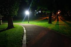 Night Lights in Ivan Franko Park (tarmo888) Tags: zeiss nightshot sony lviv ukraine lvov sonycybershot carlzeiss  lww lemberg  lwow leopolis ukrayina  sooc qx100  geosetter  geotaggedphoto smartlens foto year2016 playmemoriesmobile lensstyle variosonnart1828100