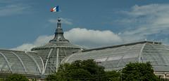 Paris - 23 juin 2016_-73 (bebopeloula) Tags: 2016 europe france grandpalais iledefrance nikond700 paris